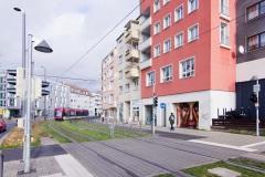 Nasim Naji, Mural (Wandgemälde), Wendenstraße 48, Braunschweig (Deutschland). 2020, Technik Sprühdose, Auftragsarbeit, Straßenansicht